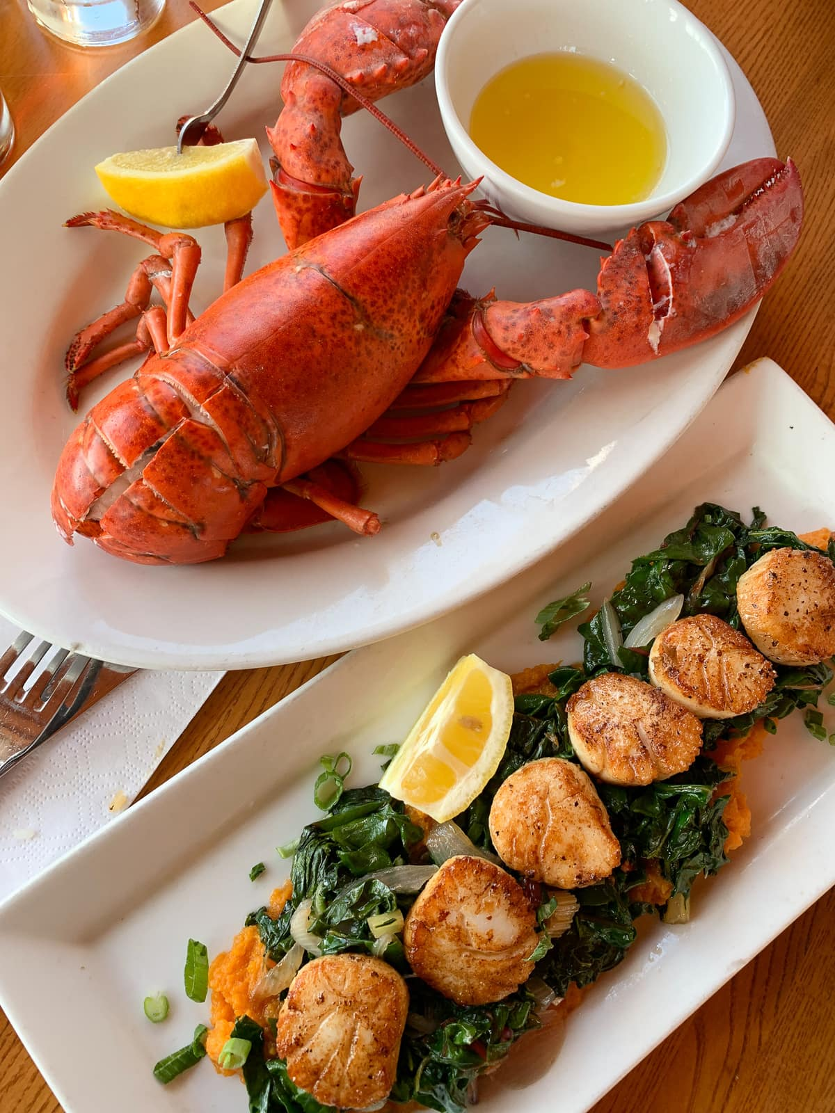 Overhead shot of lobster and scallops atop a bed of greens