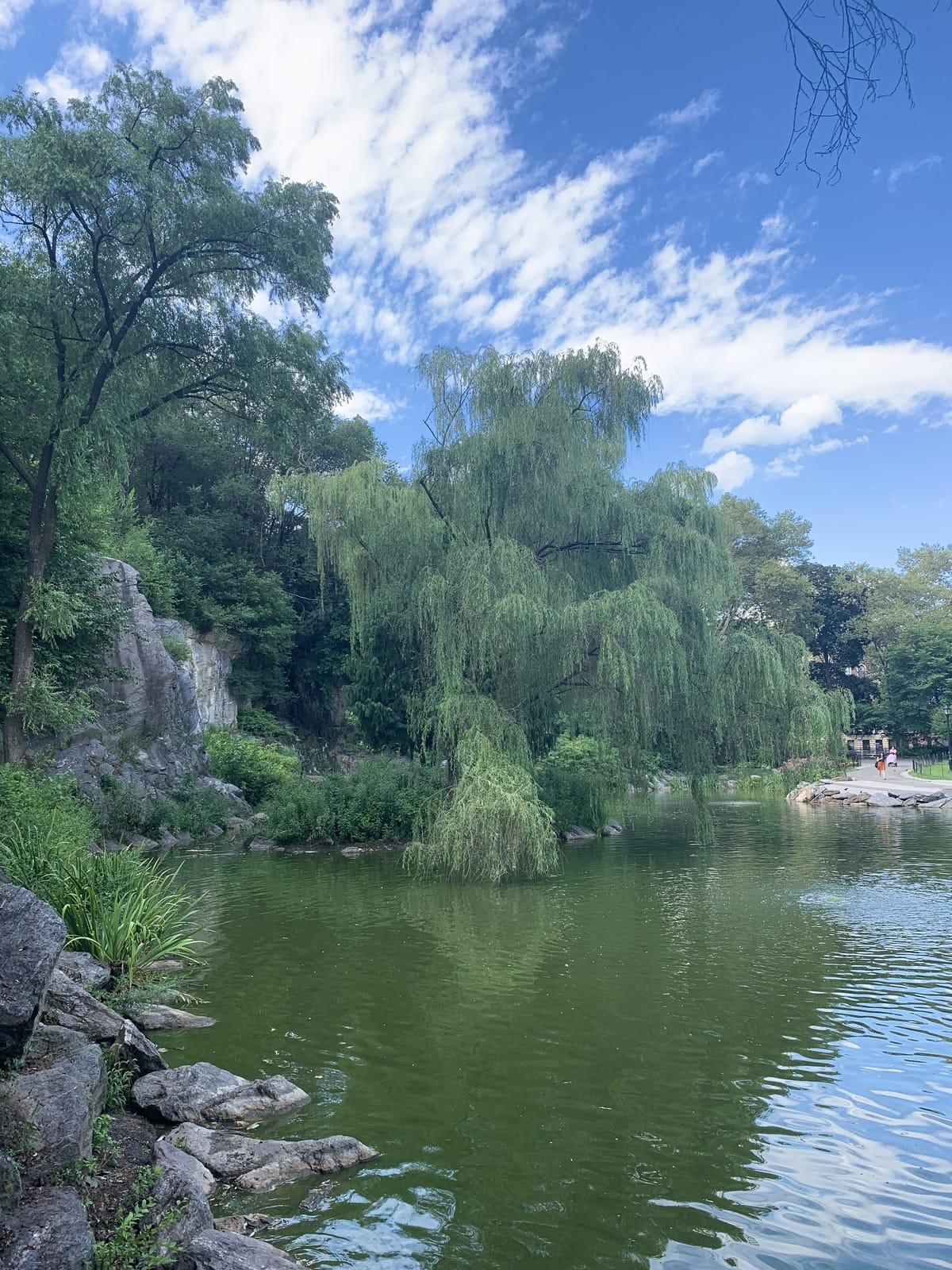 Morningside Park in New York City