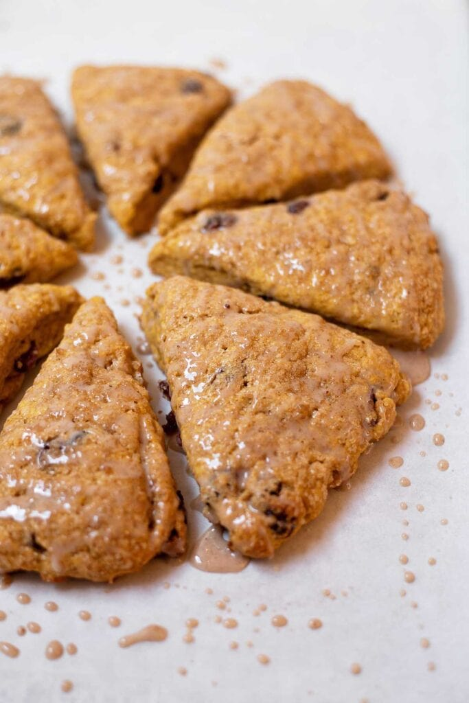 Pumpkin cranberry scones arranged in a circle on a sheet tray