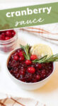 Graphic of cranberry sauce that reads 'Cranberry Sauce'